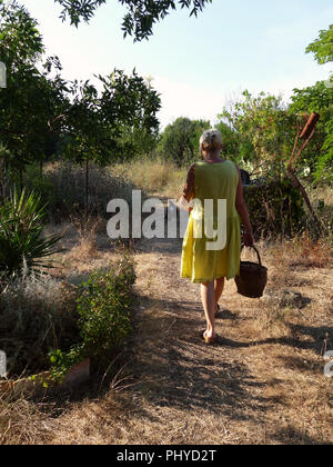 woman in yellow summer dress with a basket of food for the Chickens in their coup and run land at a private french house. Model Released - Stock Photo