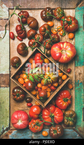 Flat -lay of fresh colorful tomatoes on tray, vertical composition - Stock Photo