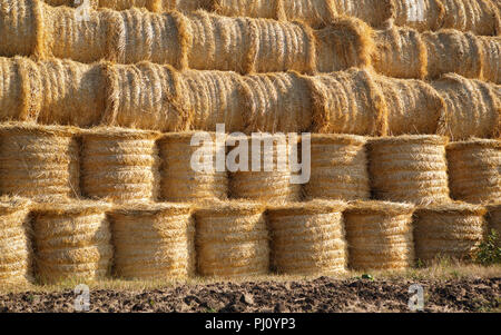 Haystack in agricultural field under the blue sky. Autumn harvest on farm is ready. Rural landscape background. Dry crops in countryside - Stock Photo