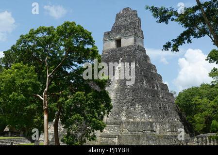 Tikal, Mayan ruins, Guatemala with Temple 1 - Stock Photo
