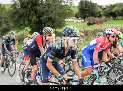 2016 Tour of Britain cyclists, featuring Bradley Wiggins, riding towards Macclesfield, Cheshire - Stock Photo