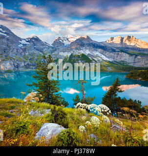 Colorful summer morning on unique lake - Oeschinen (Oeschinensee), UNESCO World Heritage Site.Switzerland, Europe. - Stock Photo