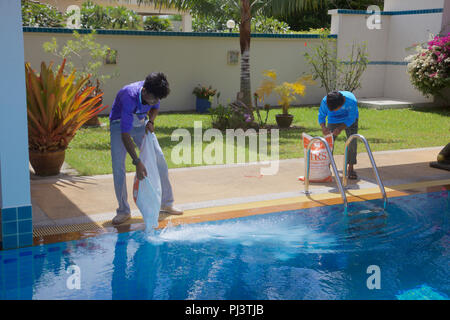 Bags of salt being poured into a salt water swimming pool in ...