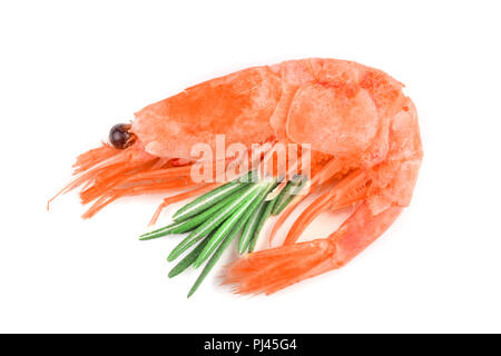 Red cooked prawn or shrimp with rosemary isolated on white background - Stock Photo