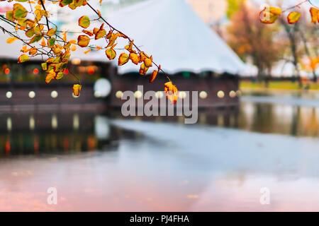 Colorful branch with leaves in autumn over blue water, bright reflections in water, architectural tented buildings in the park. Romantic mood, concept of nostalgia. Natural blurred background - Stock Photo