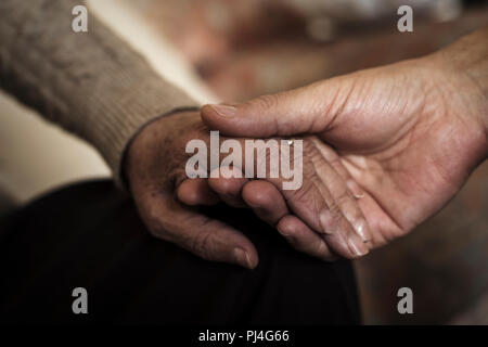 closeup of a young caucasian man holding the hand of an old caucasian woman with affection - Stock Photo