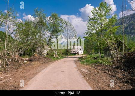 Wonderful nature, Walking trips in Triglav National Park near Ukanc and Waterfall Slap Savica, Bohinj Valley and Lake, Upper Carniolan, Slovenia, Euro - Stock Photo