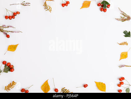 Autumn composition. Frame made of autumn leaves, berries, flowers, hawthorn, heather on white background. - Stock Photo