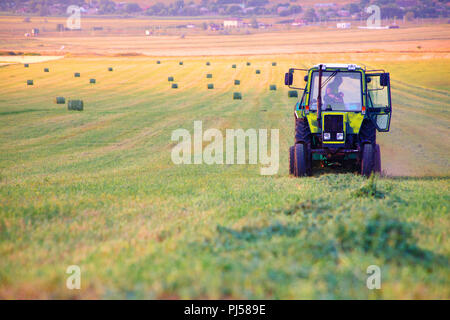 The farmer on the tractor collects the hay cut in the field in bales for storage for the winter in the barn on the farm - Stock Photo