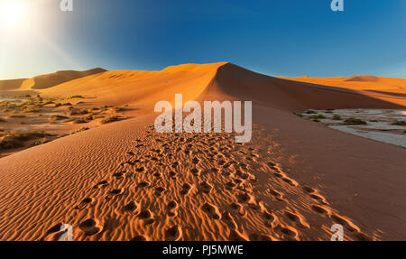 beautiful sunrise landscape, hidden Dead Vlei in Namib desert, Namibia, Africa wilderness landscape - Stock Photo