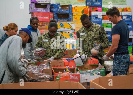 180831-N-FA490-1402 LOS ANGELES (Aug. 31, 2018) Sailors, assigned to the Arleigh Burke-class guided missile destroyer USS Dewey(DDG105), sort produce at the Los Angeles Regional Food Bank on a community relations project during a scheduled visit for LA Fleet Week (LAFW). LAFW is an opportunity for the American public to meet their Navy, Marine Corps and Coast Guard teams and experience America's sea services.  During fleet week, service members participate in various community service events, showcase capabilities and equipment to the community, and enjoy the hospitality of Los Angeles and it - Stock Photo