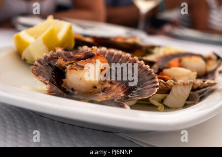 Typical Asturian dish of zamburiñas - Stock Photo