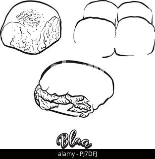 Hand drawn sketch of Blaa bread. Vector drawing of Bun food, usually known in Ireland. Bread illustration series. - Stock Photo