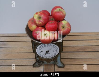 Red apples on an old-time kitchen scale seen from above - Stock Photo