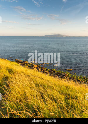 Evening light on the grassy cliffs of Bowleaze Cove, looking across Weymouth Bay to the Isle of Portland. - Stock Photo