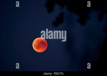Complete lunar eclipse in the 7/27/2018 in Hamburg, Totale Mondfinsternis am 27.07.2018 in Hamburg - Stock Photo