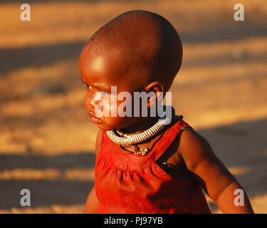 Authentic Himba village in Namibia - Stock Photo