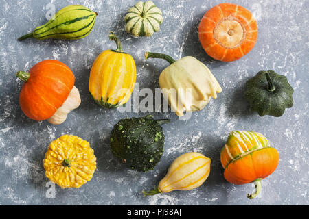 A variety of colorful pumpkins on a gray background, view from above. Flat lay - Stock Photo