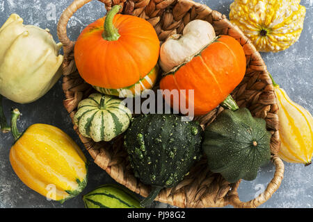 Close-up of a variety of colorful pumpkins in a basket on a gray background. View from above, flat lay. - Stock Photo