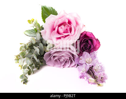 Pink and purple roses with leaves isolated on white background, three flowers arrangement - Stock Photo