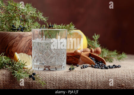 Cocktail gin, tonic with lemon and a branch of juniper with berries. Copy space for your text. - Stock Photo