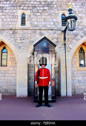 A Queen's guard standing to attention in Windsor Castle. - Stock Photo