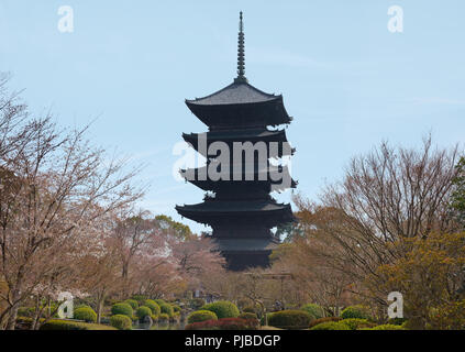 KYOTO, JAPAN - March 25, 2018: Cherry trees in bloom and pagoda in a Japanese temple. - Stock Photo