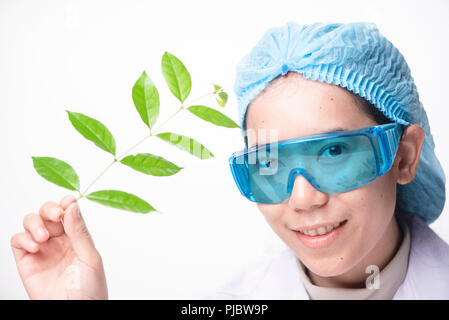 Young biotechnology scientist chemist working in lab - Stock Photo