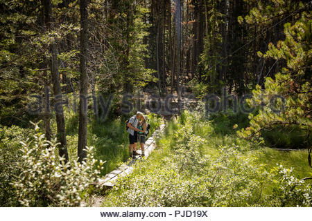 Affectionate mature couple hiking, kissing on sunny forest trail - Stock Photo