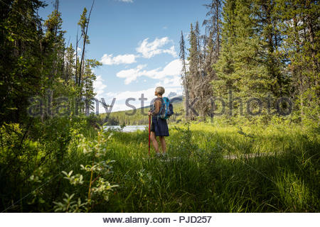 Mature woman backpacking, hiking in forest, Alberta, Canada - Stock Photo