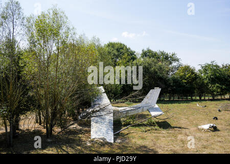 Crashed plane, Birds Park, Villars Les Dombes, France - Stock Photo
