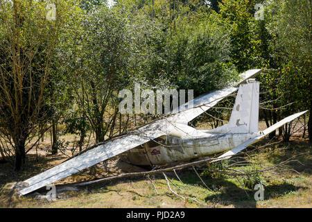 Crashed plane, Birds Park, Villars Les Dombes, France - Stock Photo