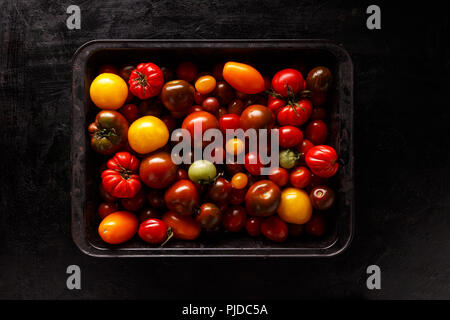 Assortment of colored fresh tomatoes in metal tray on black background, flat lay - Stock Photo