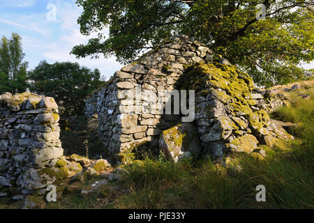 View SSE of an outbuilding (barn) at abandoned upland farmstead of Hafod y Garreg in the eastern Carneddau, to W of Conwy Valley, Snowdonia, Wales, UK - Stock Photo