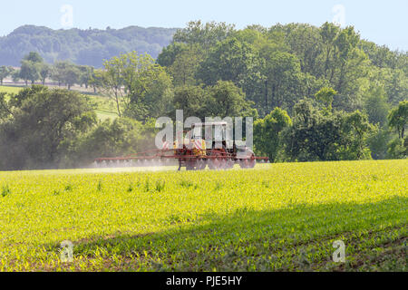 rural agricultural scenery with tractor apllying something on a field at spring time in Hohenlohe, a district in Southern Germany - Stock Photo