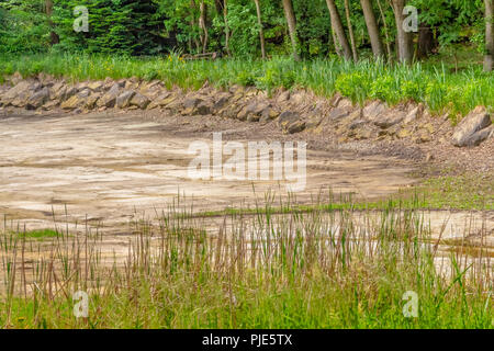 dewatered and excavated lake detail near a forest at spring time - Stock Photo