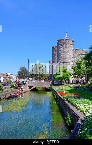 Punting on the great stour with westgate towers in the background, Canterbury - Stock Photo