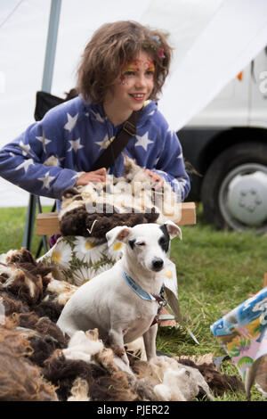 Chepstow, Wales – Aug 16: Jack Russell sits with girl learning to separate sheep's wool for spinning on 16 Aug 2015 at the Green Gathering Festival - Stock Photo