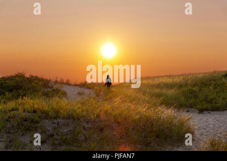 Walking towards the sunset, taken on Cape Cod bay on a misty evening - Stock Photo