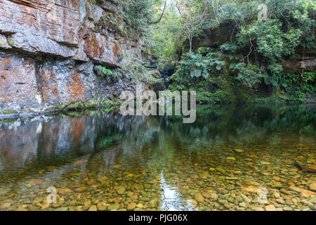 A lagoon with crystal clear water in the middle of the jungle of Bolivia - Stock Photo