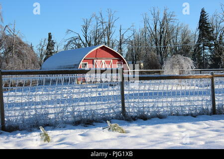 Barnyard after ice storm - Stock Photo