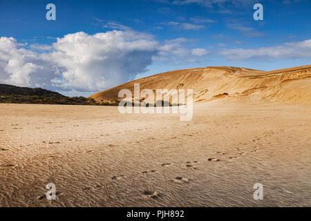 Te Paki giant sand dunes, Northland, New Zealand. - Stock Photo