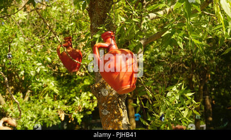 Two clay jugs on tree - Stock Photo