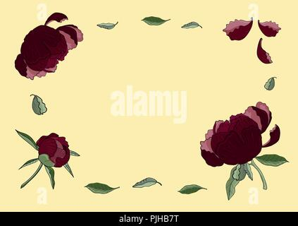 Frame of dark red peony flowers, buds and green leaves. Vintage botanical illustration of beautiful plants isolated on the light orange background. Fo - Stock Photo