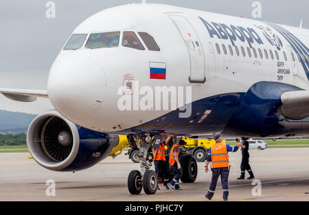 Russia, Vladivostok, 08/10/2018. Passenger airplane Airbus A319 of Aurora Airlines prepares for departure. Engineers check aircraft systems. Maintenan - Stock Photo