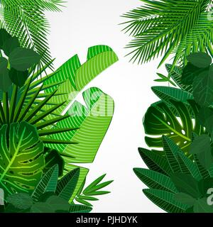 Tropical leaves border on isolate background. Vector illustration. Eps 10. - Stock Photo