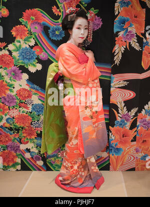Maiko in kimono posing in front of a background with traditional floral pattern on a tatami. - Stock Photo