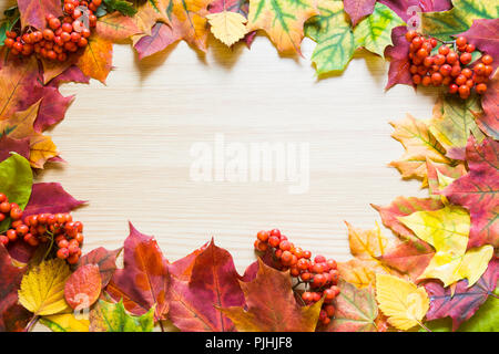 Autumn leaves and rowanberry as border on wooden board. Copy space. Fall concept. - Stock Photo