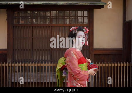 Maiko in a kimono walking in front of the gate of a traditional Japanese house in Kyoto. - Stock Photo