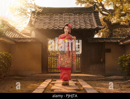 Maiko in a kimono posing on a stone path in front of the gate of a traditional Japanese house surrounded by cherry blossoms and pine trees in the rays - Stock Photo